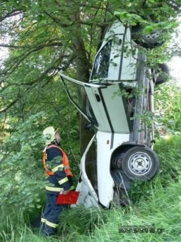 descendo da árvore